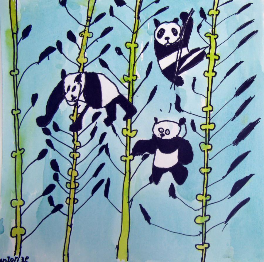 Panda tegning